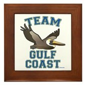 Team Gulf Coast Pelican Framed Tile