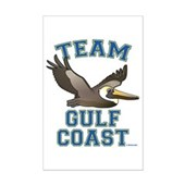 Team Gulf Coast Pelican Mini Poster Print