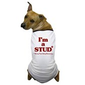 I'm a STUD* Dog T-Shirt