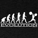 Evolution
