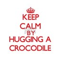 Keep calm by hugging a Crocodile T-Shirt