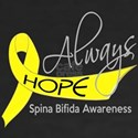Spina Bifida AlwaysHop Shirt