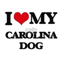 I love my Carolina Dog T-Shirt