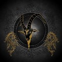 Billygoat in gold and black, awesome skull T-Shirt