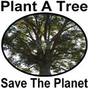 Plant A Tree Save The Planet White T-Shirt