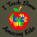 Teach Amazing Kids T-Shirt