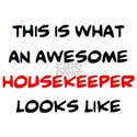 awesome housekeeper Women's Classic White T-Shirt