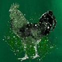 Green Rooster Squares Shirt