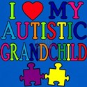 I Love My Autistic Grandchild Tshirts