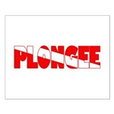 Plongee French Scuba Flag Small Poster